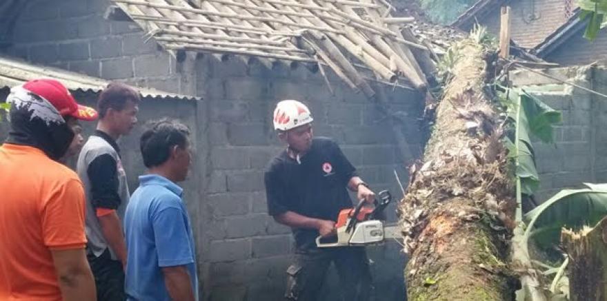 Image : Gotong-Royong : Evakuasi Pohon Tumbang di Desa Banyuadem